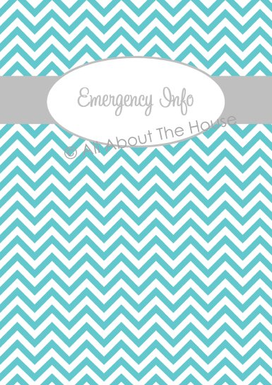 Aqua chevron with grey font(1)