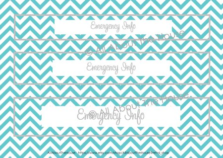 Spine - Aqua chevron and grey font