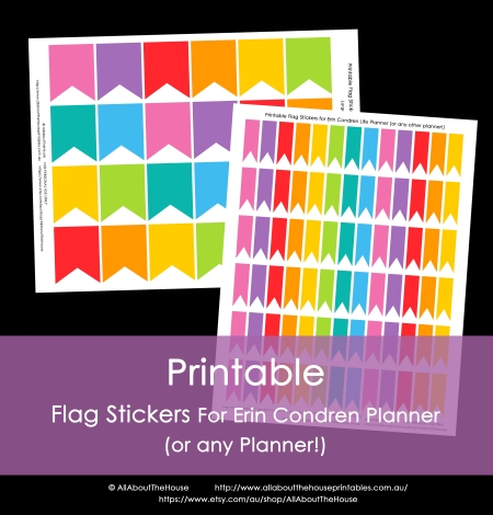 Printable Flag calendar stickers planner printable rainbow erin condren plum paper